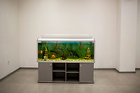 A fish tank stands in an indoor work room at  a Bashneft oil refinery in Ufa, Bashkortostan, Russia. The area is a major oil and gas producing region in the country.