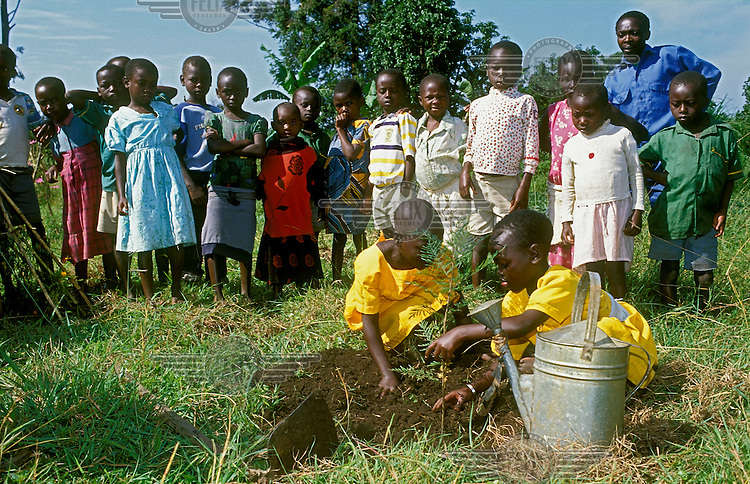 Tree planting project for school children.
