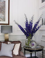 A vase of dark blue delphiniums creates a splash of colour in a corner of the living room