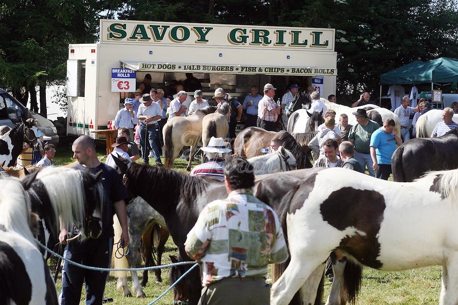 23/6/2009. Spancill Hill horse fair. A scene from the Spancill Hill horse Fair Co Clare.