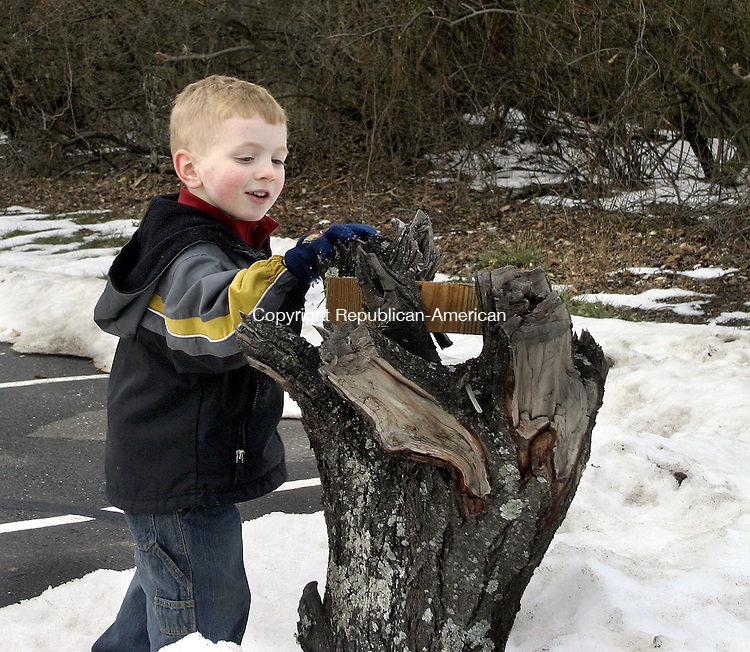 WOODBURY, CT -26 DECEMBER 2007 -122607DA03-<br /> Jack Wolf, 3, of Woodbury places a piece of wood on a stump during a walk with his dad Wednesday afternoon in the parking lot of his preschool, Creative Arts Studio in Woodbury.<br /> Darlene Douty/Republican-American