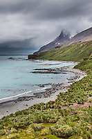 Fortuna Bay, South Georgia Island