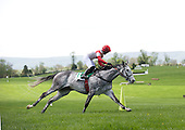 Slip Away wins the Gwathmey during his 2010 championship season.