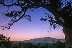 Dusk softens Mount Diablo peak in Danville.