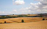 Summer landscape of golden rolling arable fields view west from near Liddington castle, Wiltshire, England