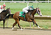 Glacken's Mark winning The White Clay Creek Stakes at Delaware Park on 8/19/06