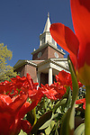 Rooke Chapel with tulips