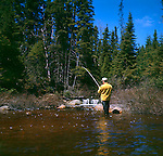 Fly fishing for trout, wilderness fly-in<br />