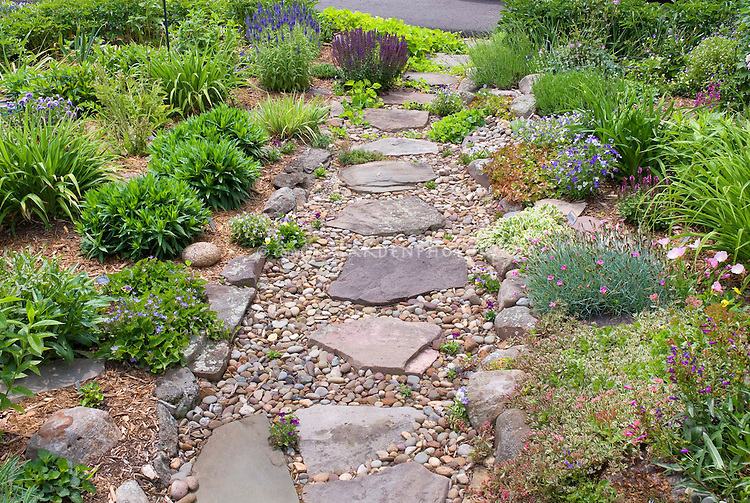 Rock garden on slope with path plant flower stock for Hillside rock garden designs