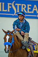HALLANDALE BEACH, FL - JAN 28: A pony boy takes a break in between races during the Pegasus World Cup Invitational Day at Gulfstream Park Race Course on January 28, 2017 in Hallandale Beach, Florida. (Photo by Scott Serio/Eclipse Sportswire/Getty Images)