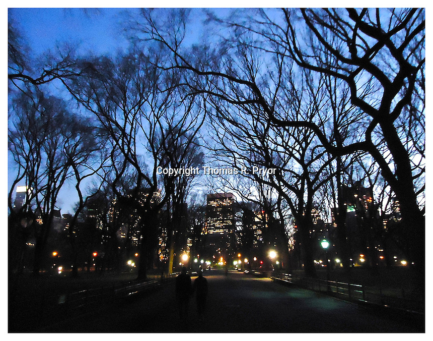 NEW YORK, NY - FEBRUARY 17: Photograph of Central Park's Poet's Walk at night under lights on February 17, 2012 in New York, New York. Photo Credit: Thomas R. Pryor