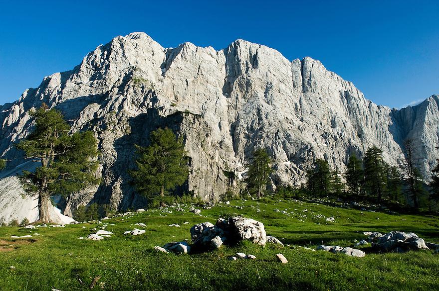 Mount Velika Mojstrovka, view from &quot;Sleme&quot;<br /> Julian Alps<br /> Triglav National Park, Slovenia<br /> July 2009