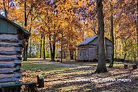 63895-16517 Cabin at Log Cabin Village in fall Kinmundy IL