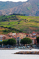 The beach in the village. Collioure. Roussillon. France. Europe. Vineyard.