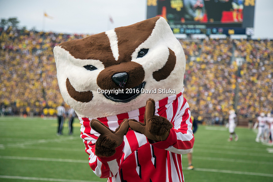 Wisconsin Badgers mascot Bucky Badger during an NCAA college football game against the Michigan Wolverines Saturday, October 1, 2016, in Ann Arbor, Michigan. Michigan won 14-7. (Photo by David Stluka)