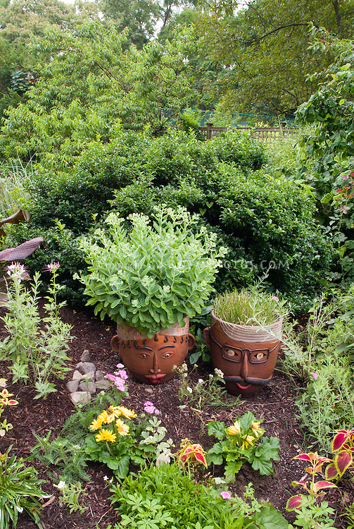Container garden, pots with faces, annual and perennial plants and flowers, coleus, sedum, yarrow, canna, in shade