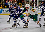 9 February 2019: University of New Hampshire Wildcat Defenseman Will MacKinnon, a Freshman from Plymouth, MI, in second period action against the University of Vermont Catamounts at Gutterson Fieldhouse in Burlington, Vermont. The Wildcats fell to the Catamounts 4-1 splitting their 2-game Hockey East weekend series. Mandatory Credit: Ed Wolfstein Photo *** RAW (NEF) Image File Available ***