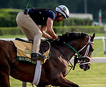 June 7, 2019 : Bourbon War gallops on the main track as horses prepare for the Belmont Stakes on Belmont Stakes Festival Weekend at Belmont Park in Elmont, New York. Scott Serio/Eclipse Sportswire/CSM