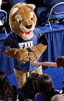 27 September 2008:  FIU's mascot, Roary, helps fire up the crowd during the FIU 3-0 (25-13, 25-23, 25-18) victory in straight sets over Troy at Golden Panther Arena in Miami, Florida.
