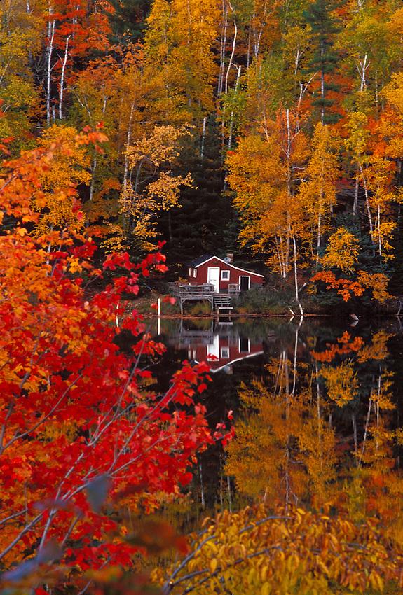 Maples in fall color surround a cabin on the Dead River near Marquette, Michigan in autumn.