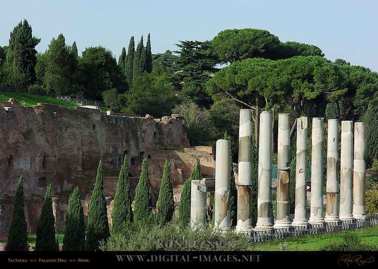 Via Sacra between Temple of Venus and Roma and Palatine Hill Rome