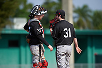 Edgewood Eagles catcher Casey Seelow (35) talks with pitcher Bryce Lashley (31) during the first game of a doubleheader against the Lasell Lasers on April 14, 2016 at Terry Park in Fort Myers, Florida.  Edgewood defeated Lasell 9-7.  (Mike Janes/Four Seam Images)
