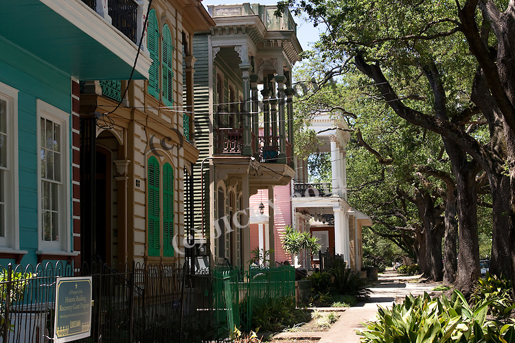 Historic homes on Esplanade Avenue just north of the French quarter