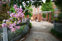 Light pink flowers brighten the walkway between Mississippi State's Chapel of Memories and Hull Hall. Tomorrow's forecast for Starkville and MSU includes sun and afternoon clouds with a high near 97 degrees.<br />