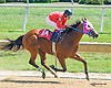 Trouble Lad winning at Delaware Park on 8/26/15