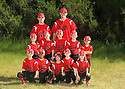 2014 Chico Baseball (Team 3)