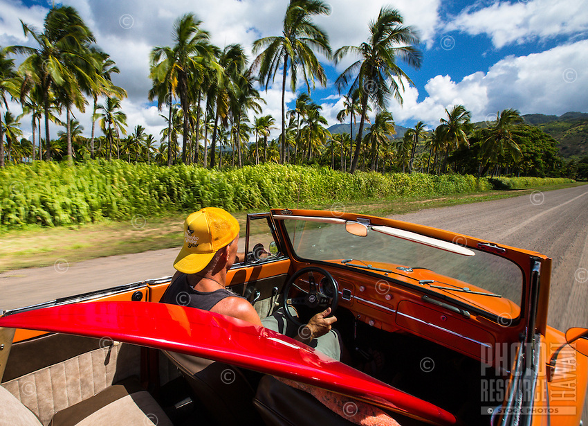 Blur motion image of man driving a classic VW Bug along palm lined road on Oahu's North Shore with surfboard in car