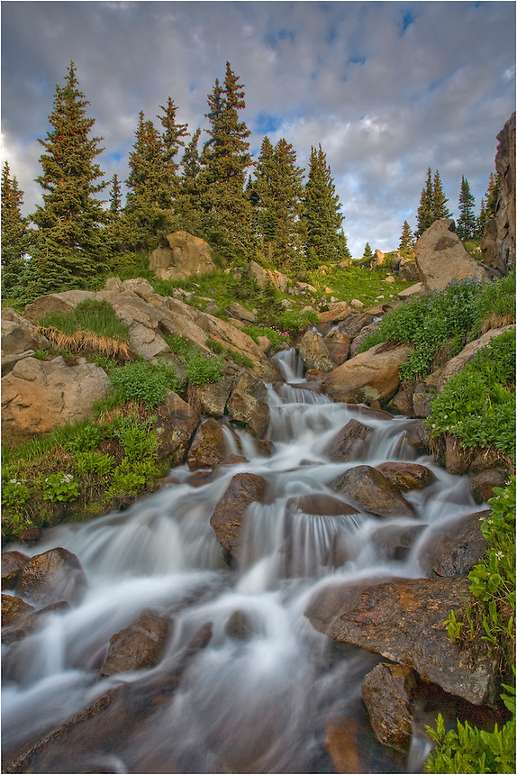 From just beneath the calm waters of Lake Isabelle, a cold stream flows out of the lake in this Colorado image. The stream flows a long way, nourishing wildflowers and wildlife along its path.