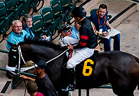 HALLANDALE BEACH, FL - JANUARY 27: Horses exit the paddock for an undercard race on Pegasus World Cup Invitational Day at Gulfstream Park Race Track on January 27, 2018 in Hallandale Beach, Florida. (Photo by Scott Serio/Eclipse Sportswire/Getty Images)