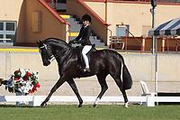 Rider 12-14