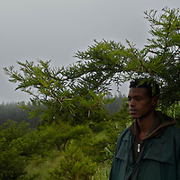 """Asefa, 19 years old, a guard for the """"Ethiopia Heritage Trust"""" an organization that is replacing imported Eucalyptus trees  with native ones in the picturesque 3100m high Entoto mountain raising behind Ethiopia's capital Addis Ababa..The image was taken on August 28, 2010. ....The Ethiopia Heritage Trust (EHT) was established in 1992 by a group of volunteer individuals wishing to engage in the preservation, conservation and restoration of historical buildings and sites of natural beauty..The preservation and conservation of the country's natural, historical and cultural heritage is not the duty for a few, but the responsibility of all citizens, because it identifies the nation and its citizens with the past and present.. EHT is a citizen based non-profit organization, whose funds come from the membership of local businesses and individuals. Members include government and private organizations, business people, celebrities and voluntary individuals. Currently, EHT has more than 1800 members, the majority of whom are Ethiopian nationals."""
