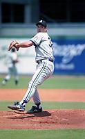 Knoxville Smokies 1994