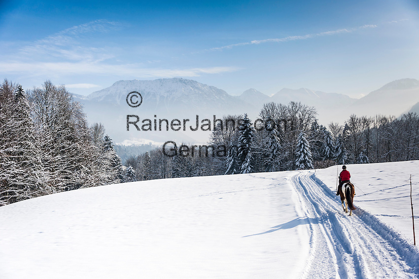 Germany, Upper Bavaria, Chiemgau, between Ruhpolding and Siegsdorf: winter scenery, horse back riding | Deutschland, Oberbayern, Chiemgau, zwischen Siegsdorf und Ruhpolding: Ausritt durch Winterlandschaft