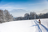 Germany, Upper Bavaria, Chiemgau, between Ruhpolding and Siegsdorf: winter scenery, horse back riding | Deutschland, Oberbayern, Chiemgau, zwischen Siegsdorf und Ruhpolding: Ausritt durch Winterlandschaft