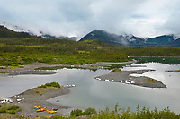 Landscape of the Chugach National Forest near Columbia Glacier, Prince William Sound, southcentral, Alaska.