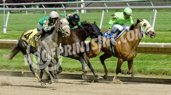 Macho Star winning Delaware Park on 5/21/11