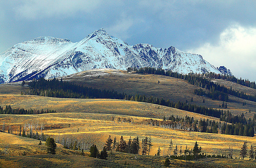 ELECTRIC PEAK AFTER AN AUTUMN SNOWFALL IN YELLOWSTONE NATIONAL PARK,WYOMING