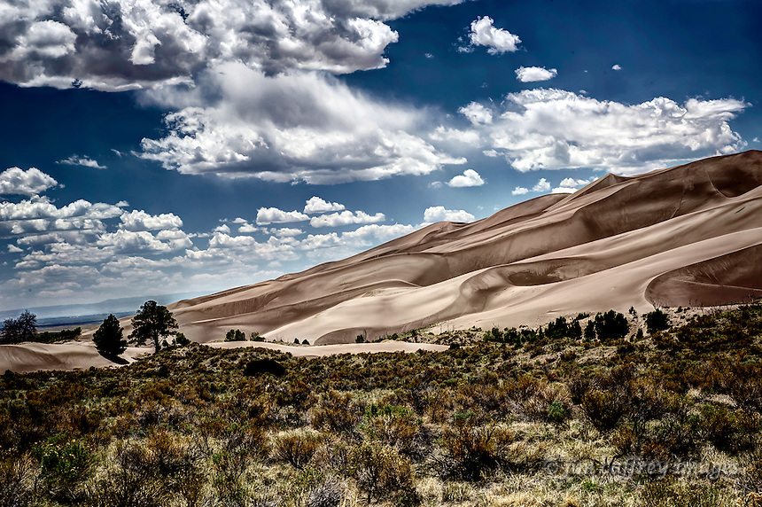 Several ecological zones inhabit the same space at Great Sand Dunes National Park.