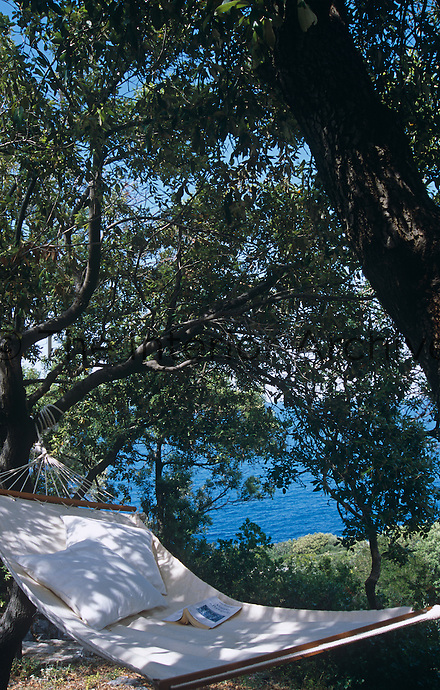 A hammock hangs beneath the olive trees with a view of the sea beyond