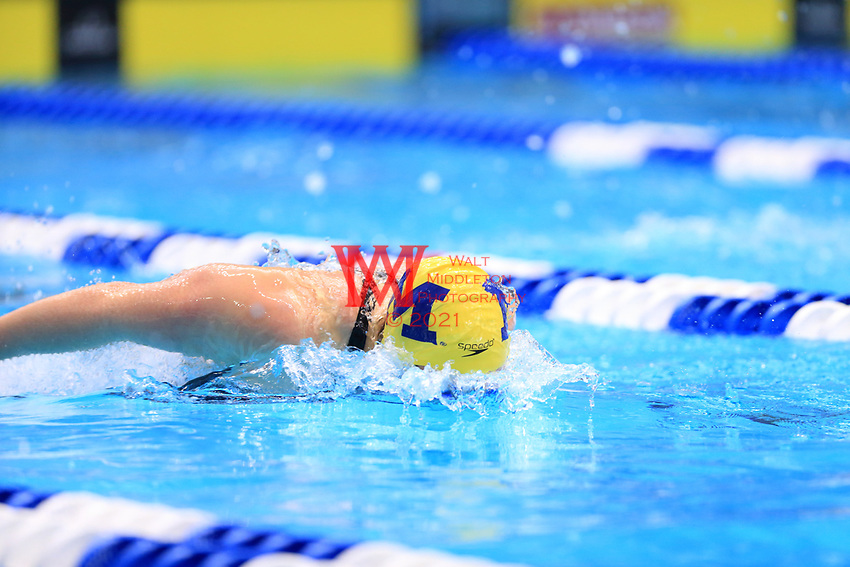 The University of Michigan women's swimming and diving team compete at the 2017 NCAA National Swimming and Diving Championships in Indianapolis, IN. March 16, 2017<br /> (Photo by Walt Middleton Photography 2017)
