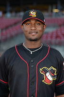 Quad Cities River Bandits pitcher Michael Feliz (28) poses for a photo before a game against the Cedar Rapids Kernels on August 18, 2014 at Perfect Game Field at Veterans Memorial Stadium in Cedar Rapids, Iowa.  Cedar Rapids defeated Quad Cities 5-3.  (Mike Janes/Four Seam Images)