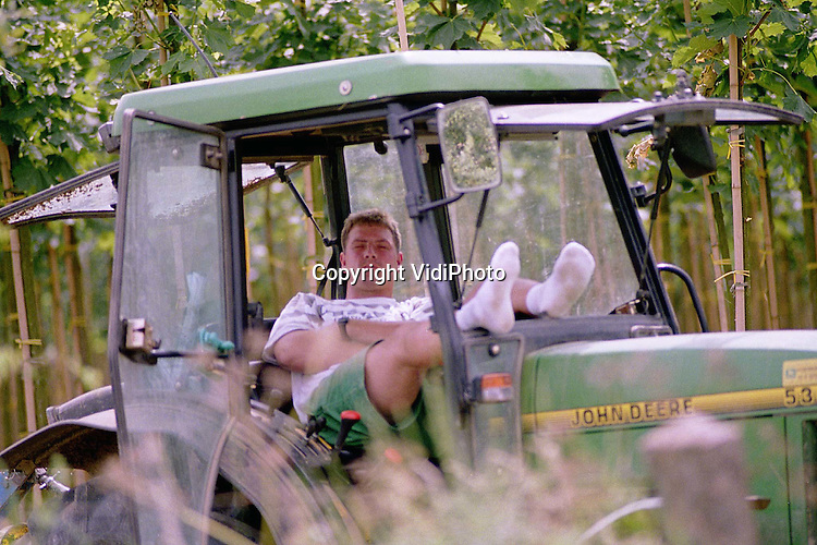Foto: VidiPhoto..ZETTEN - Even de ogen dicht. Deze boomkweker gebruikt zijn middagpauze op een bijzonder aangename wijze. Uit de zon en met voldoende ventilatie.