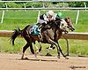 Dark Woman winning at Delaware Park on 6/20/13