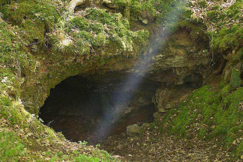 Entrée de la grotte, très similaire à celle de Lascaux
