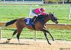 Hauler winning at Delaware Park on 10/8/15