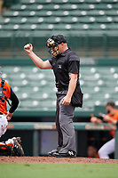 Umpire Chad Patterson calls a strike during a Gulf Coast League game between the GCL Braves and GCL Orioles on August 5, 2019 at Ed Smith Stadium in Sarasota, Florida.  (Mike Janes/Four Seam Images)